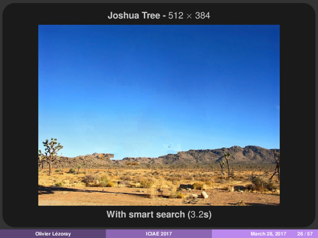 Joshua Tree - 512 × 384 With smart search (3.2s...
