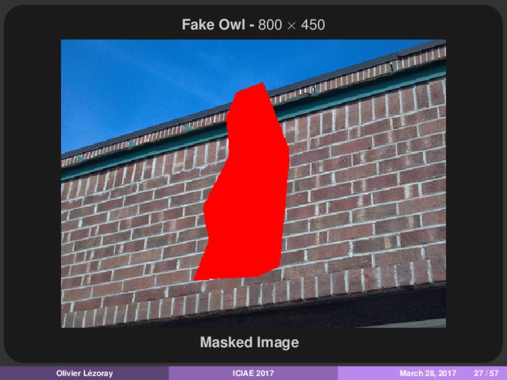 Fake Owl - 800 × 450 Masked Image Olivier Lézor...