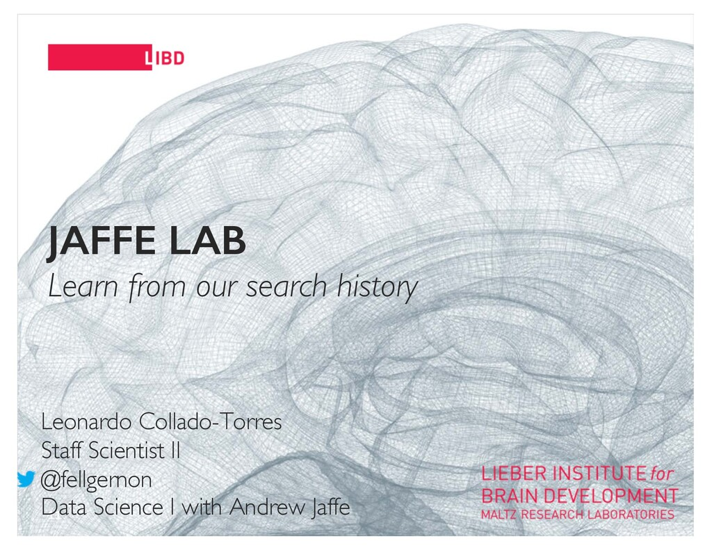 11 JAFFE LAB Learn from our search history Leon...