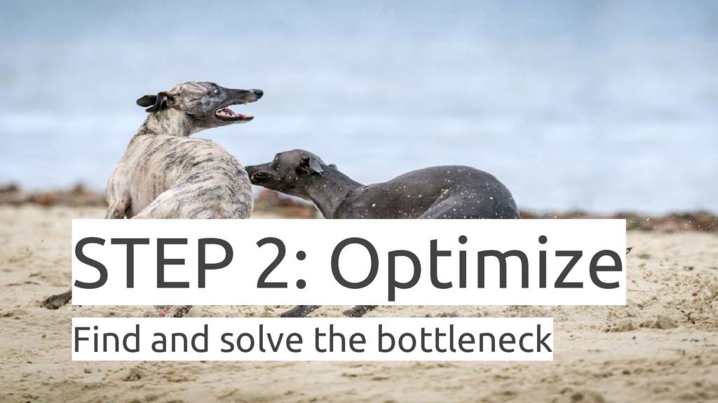 STEP 2: Optimize Find and solve the bottleneck