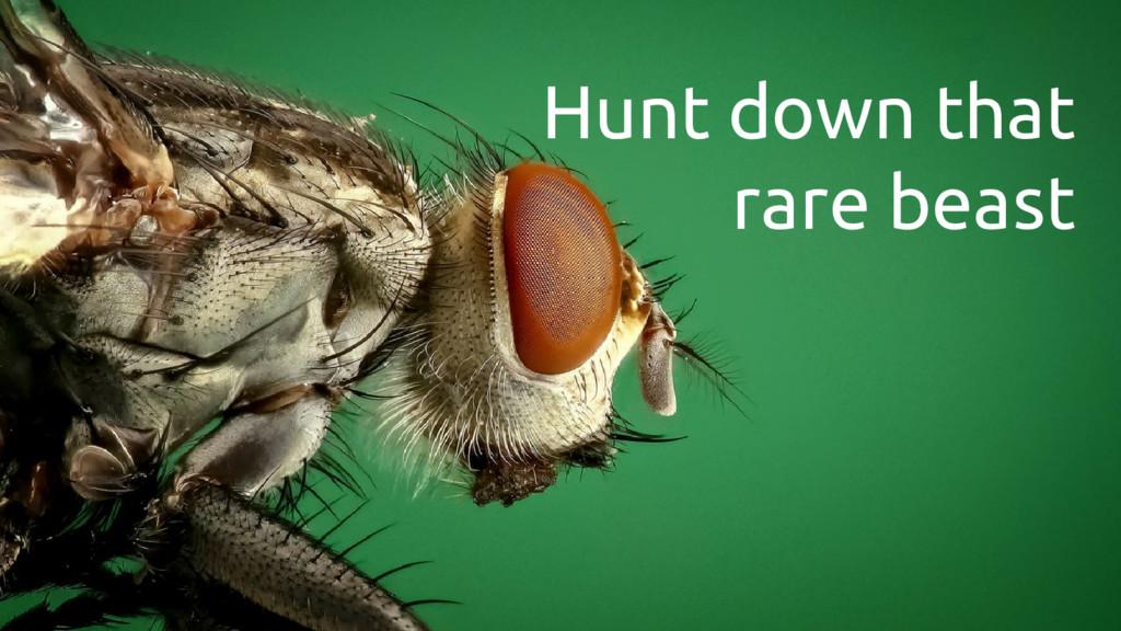 Hunt down that rare beast