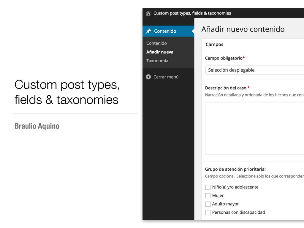 Custom post types, fields & taxonomies Braulio A...