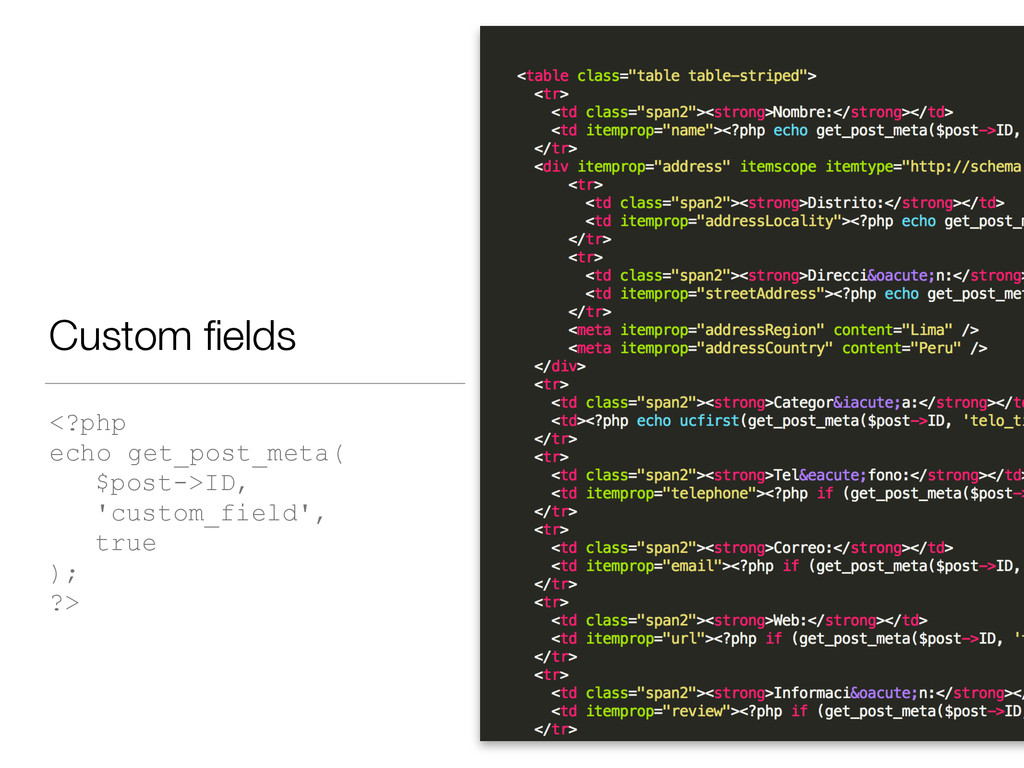 Custom fields <?php echo get_post_meta( $post->I...