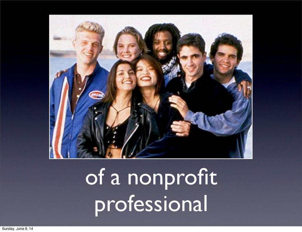 of a nonprofit professional Sunday, June 8, 14
