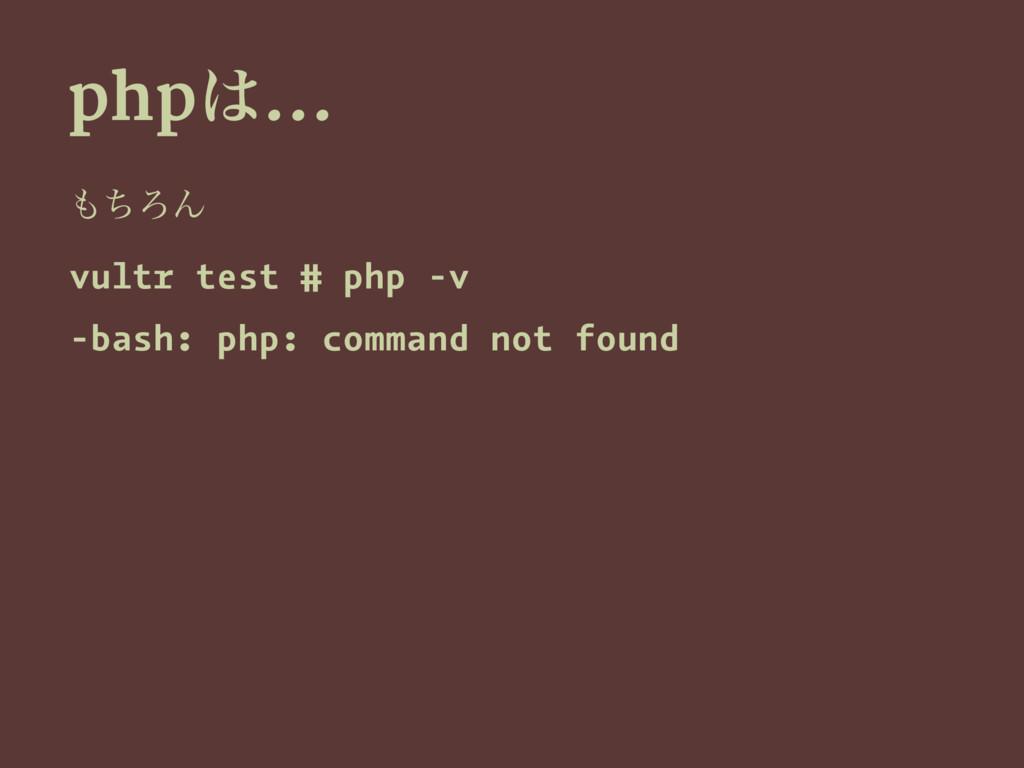 php… ͪΖΜ vultr test # php -v -bash: php: comm...