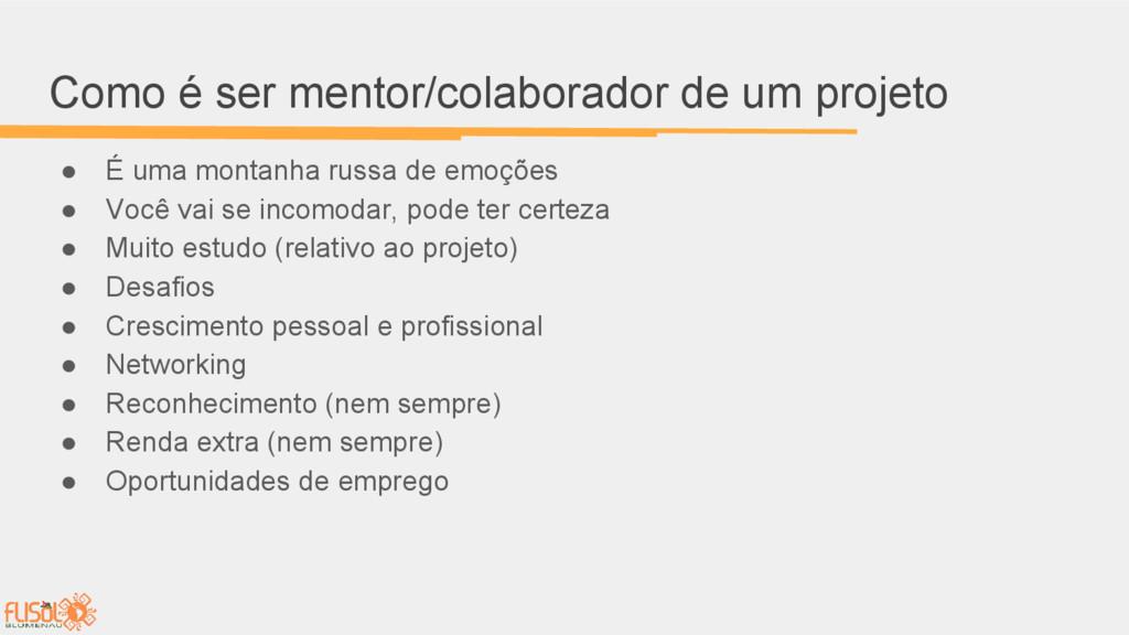Como é ser mentor/colaborador de um projeto ● É...