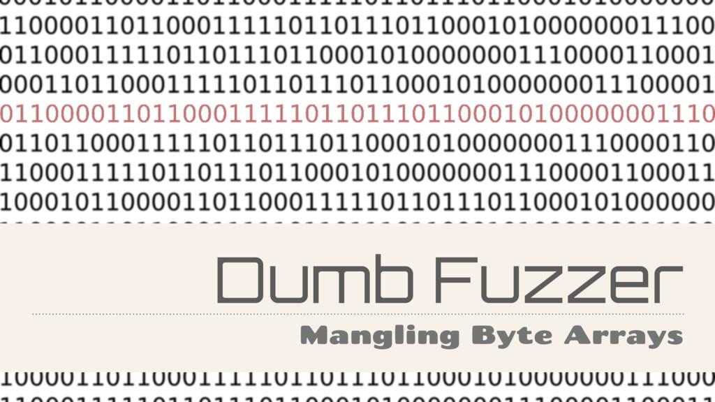 Dumb Fuzzer Mangling Byte Arrays