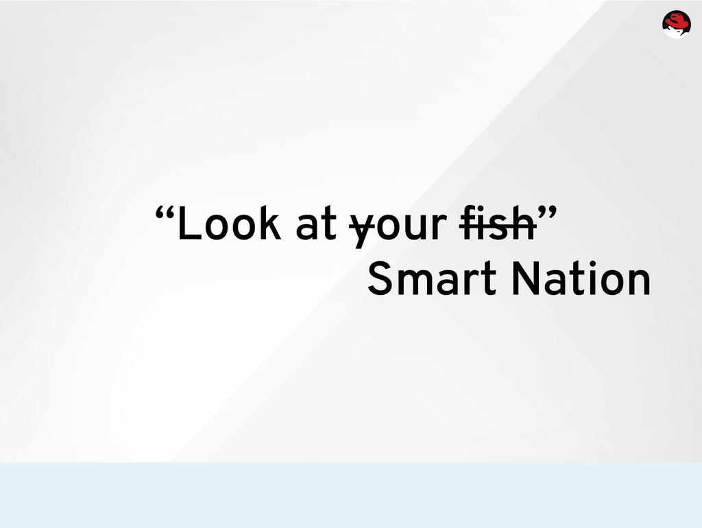 """Look at your fish"" Smart Nation"
