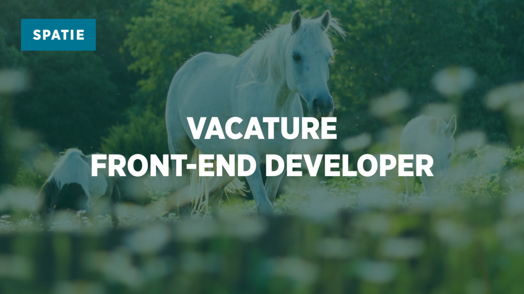 VACATURE FRONT-END DEVELOPER