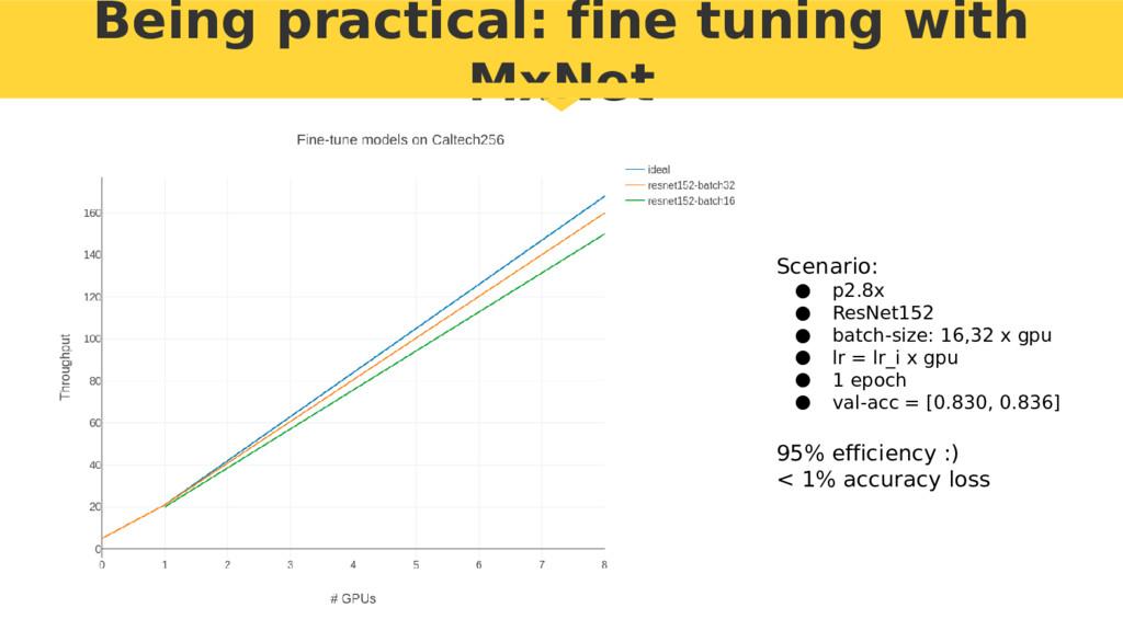 Being practical: fine tuning with MxNet Scenari...