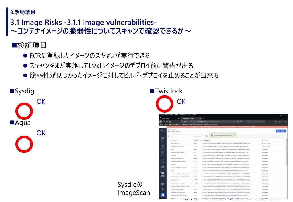 30 Copyright (C) NRI SecureTechnologies, Ltd. A...