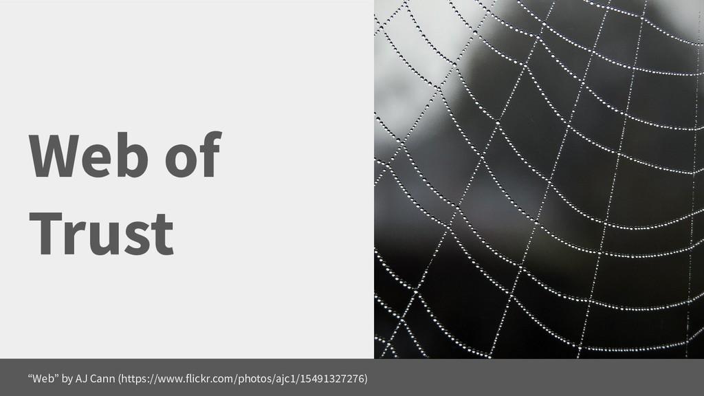 """Web of Trust """"Web"""" by AJ Cann (https://www.flic..."""