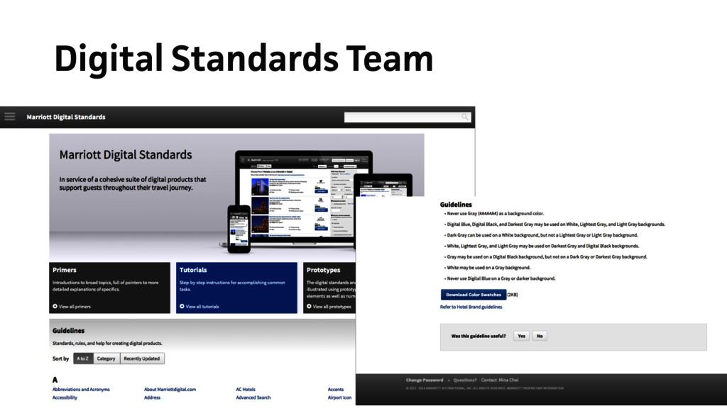Digital Standards Team