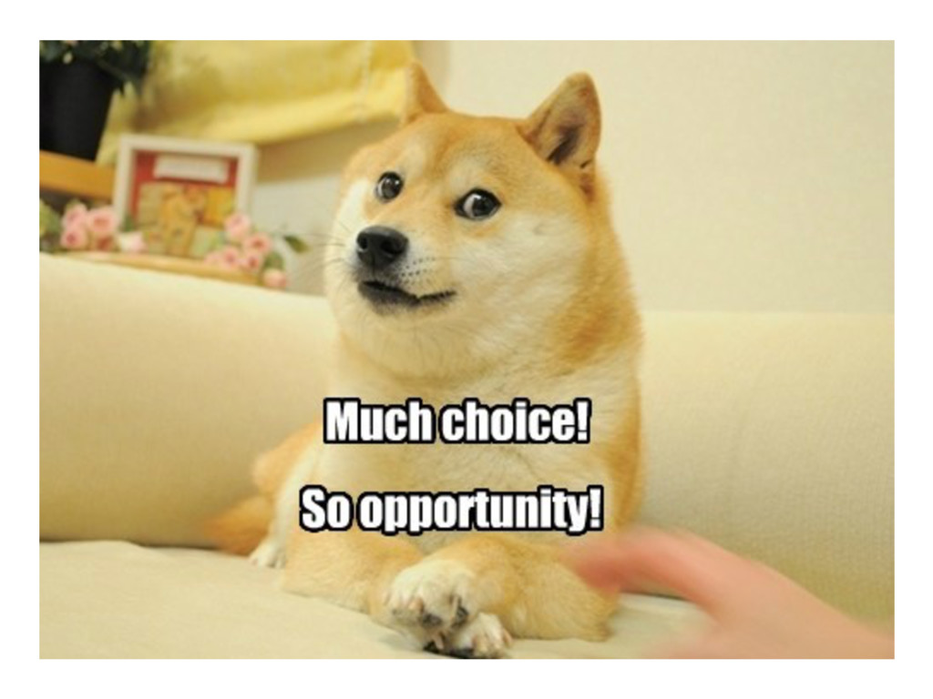 This is awesome!  Much choice! So opportunit...