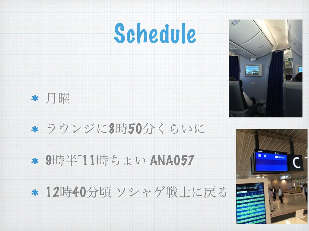 Schedule ! ݄༵ ϥϯδʹ850͘Β͍ʹ 9~11ͪΐ͍ ANA057 ...
