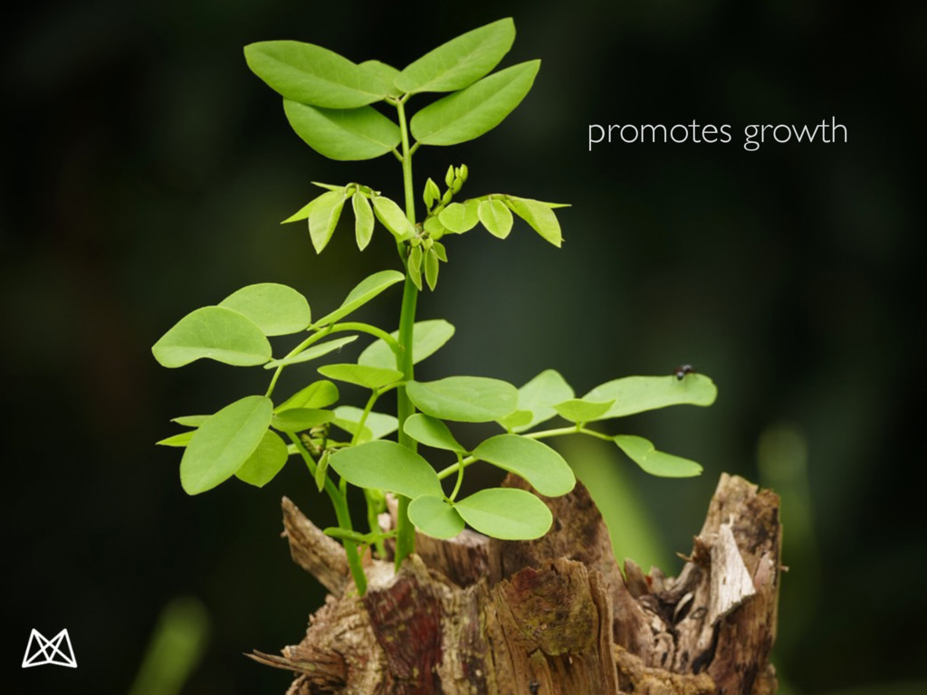 promotes growth