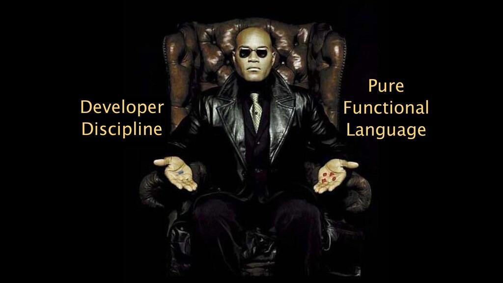 Developer Discipline Pure Functional Language