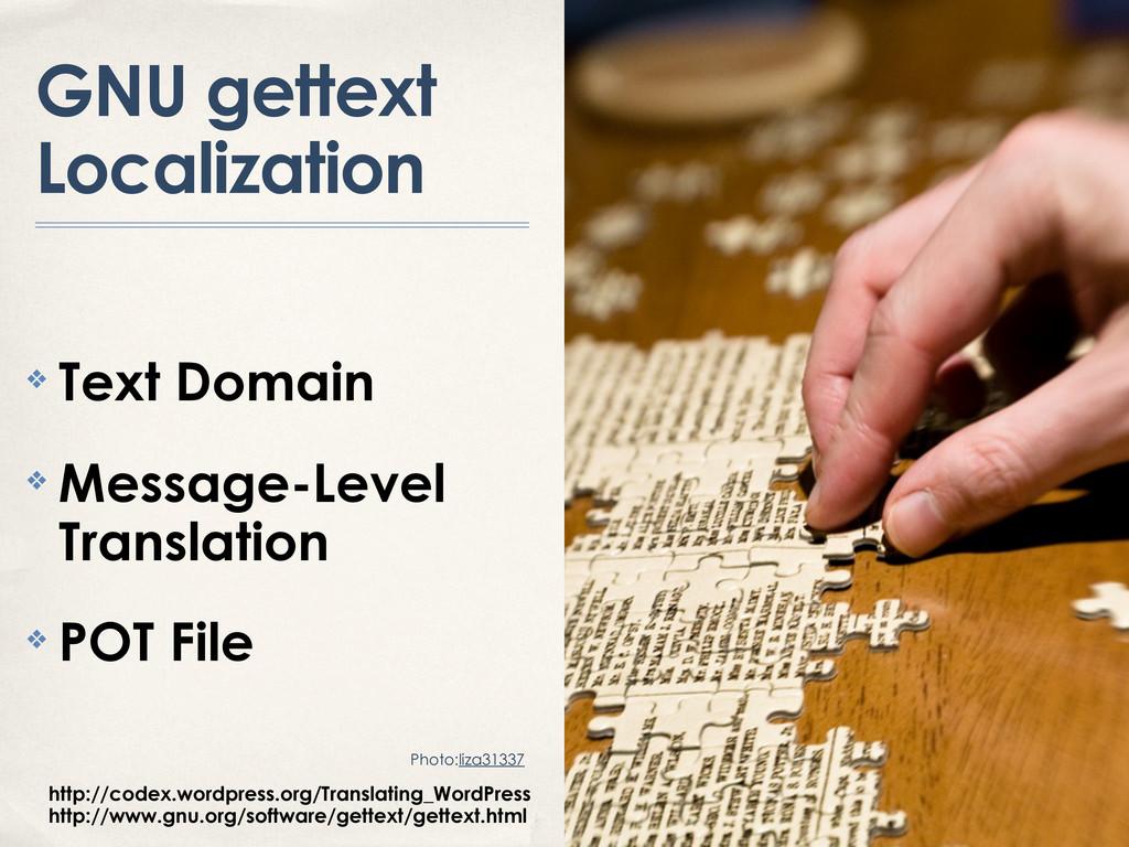 GNU gettext Localization ❖ Text Domain ❖ Messag...