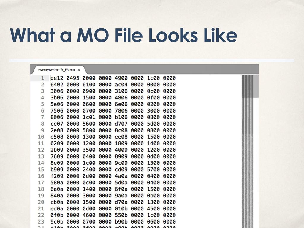 What a MO File Looks Like