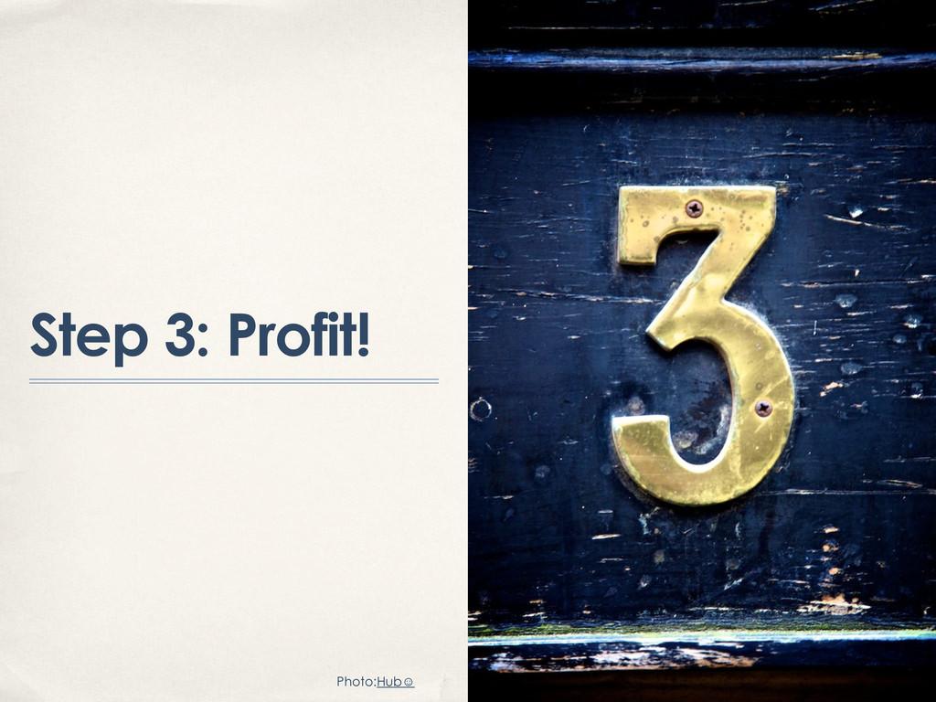Step 3: Profit! Photo:Hub☺