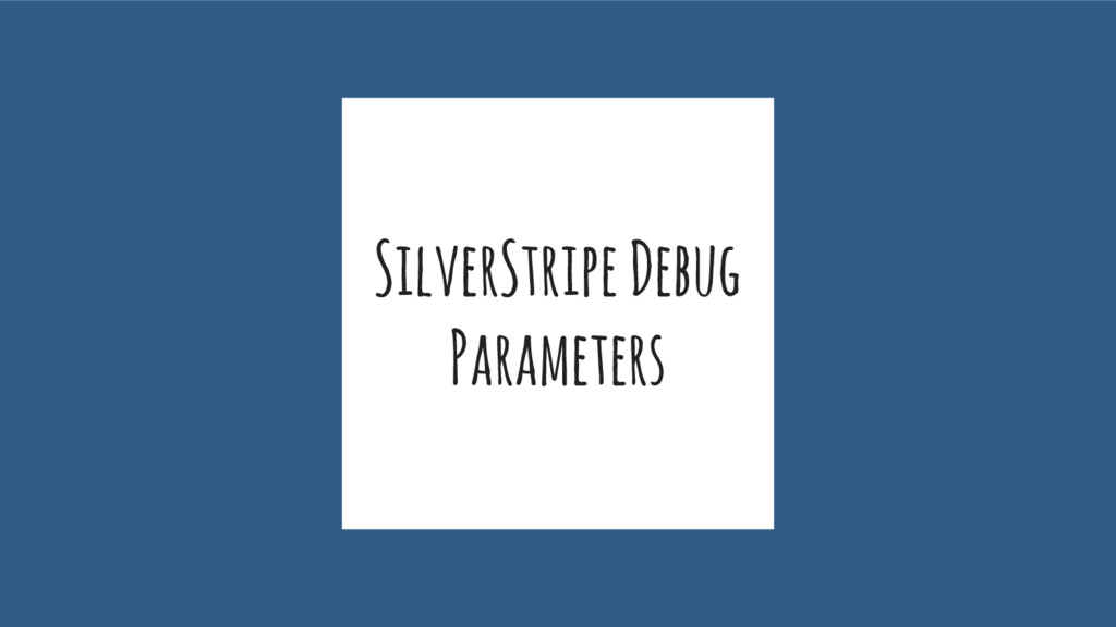 SilverStripe Debug Parameters