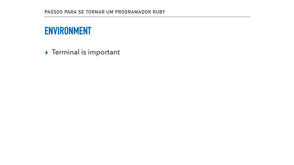 ENVIRONMENT ▸ Terminal is important PASSOS PARA...