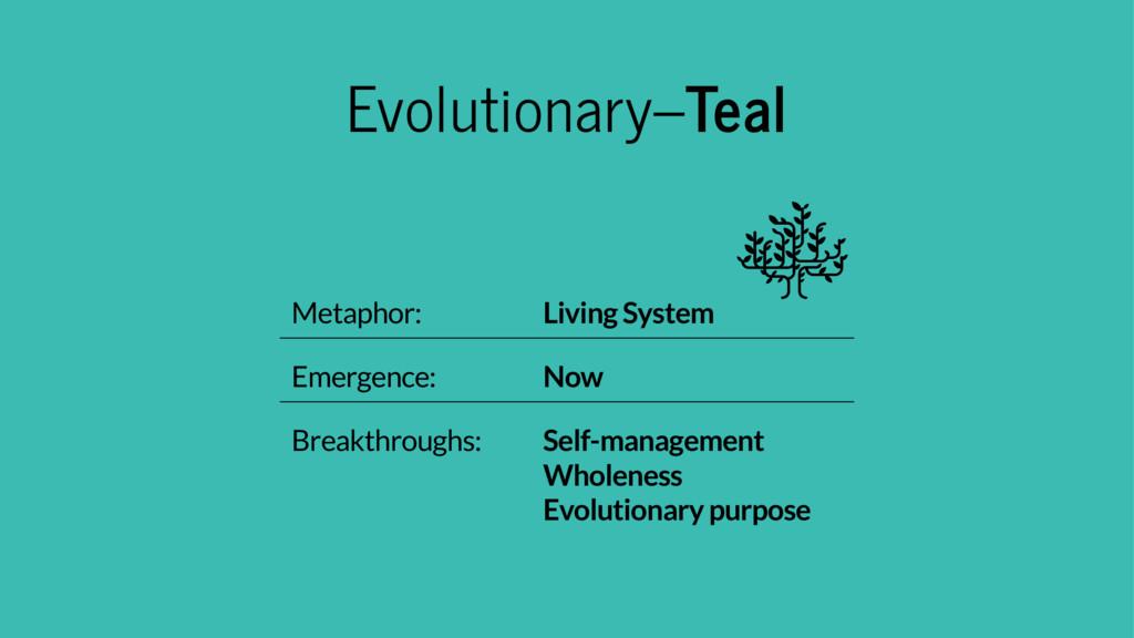 Evolutionary–Teal Metaphor: Living System Emerg...