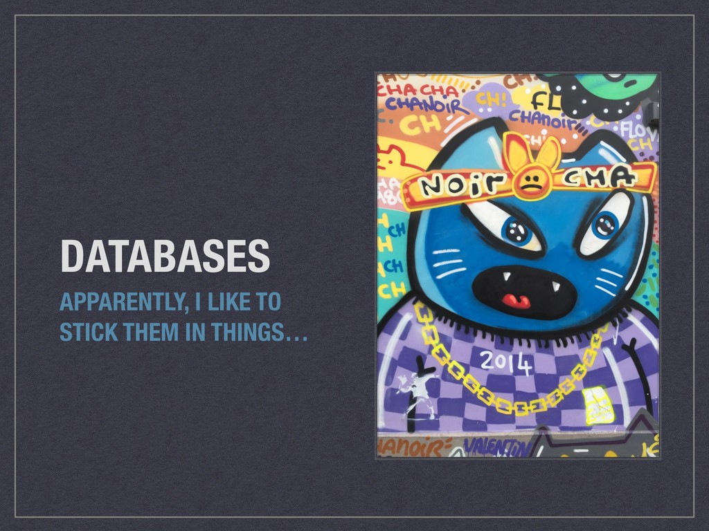 DATABASES APPARENTLY, I LIKE TO STICK THEM IN T...