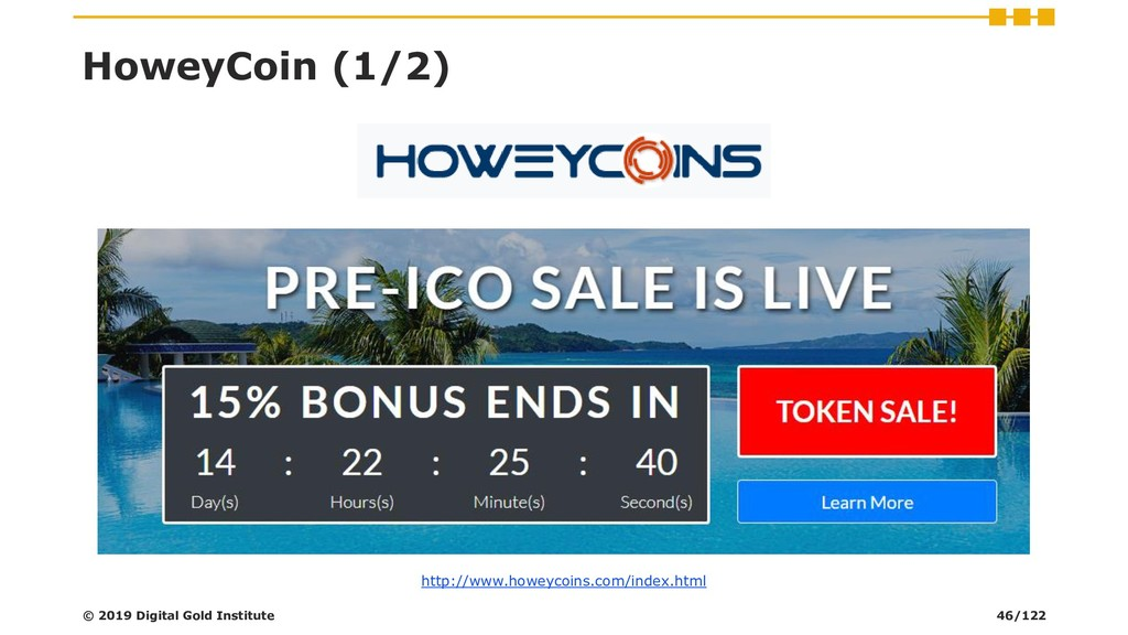 HoweyCoin (1/2) © 2019 Digital Gold Institute h...