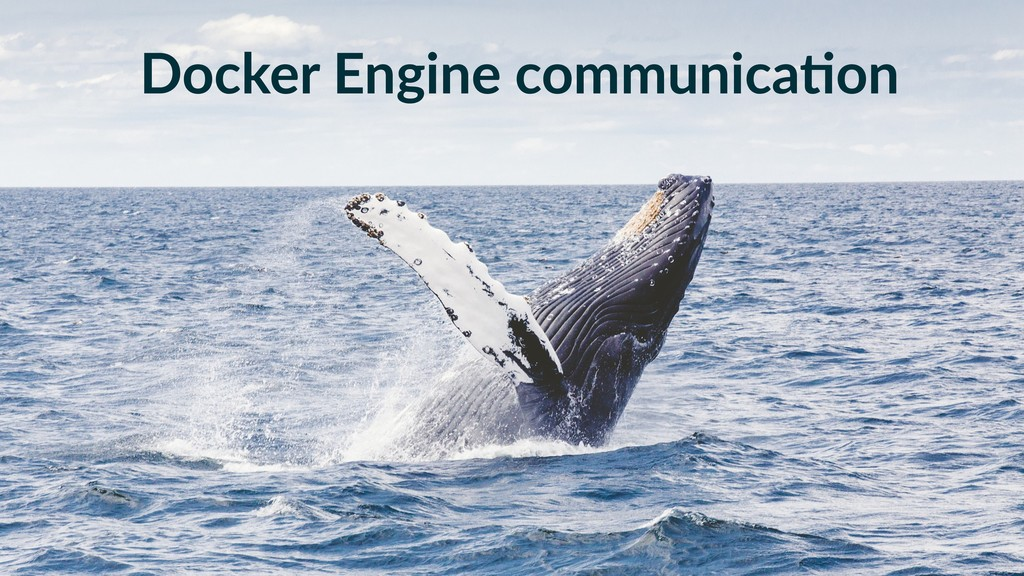 Docker Engine communica-on