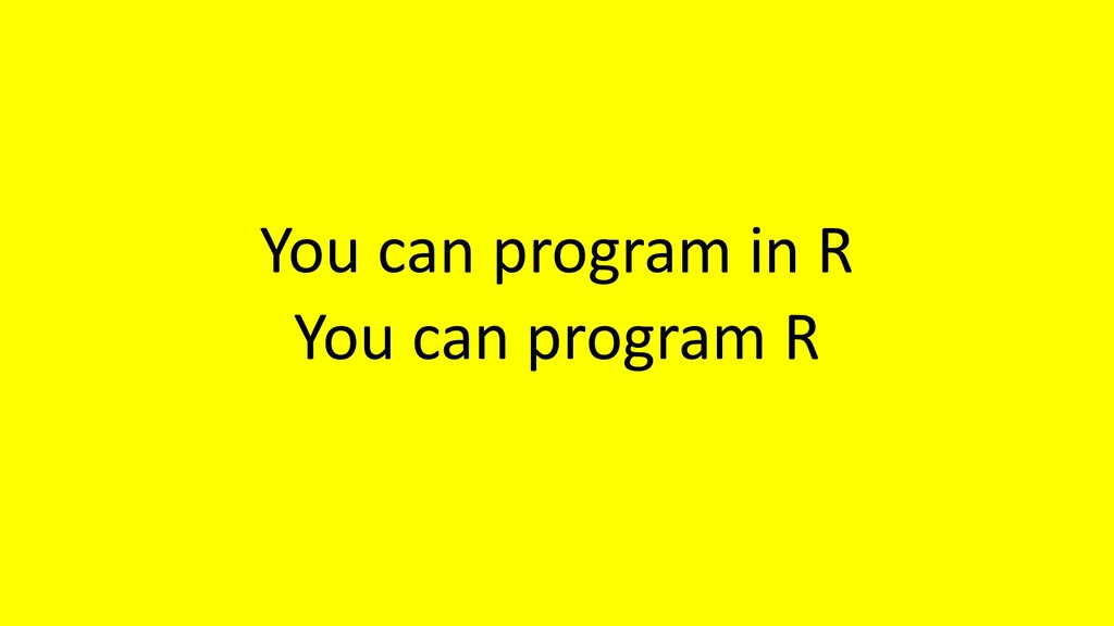 You can program in R You can program R