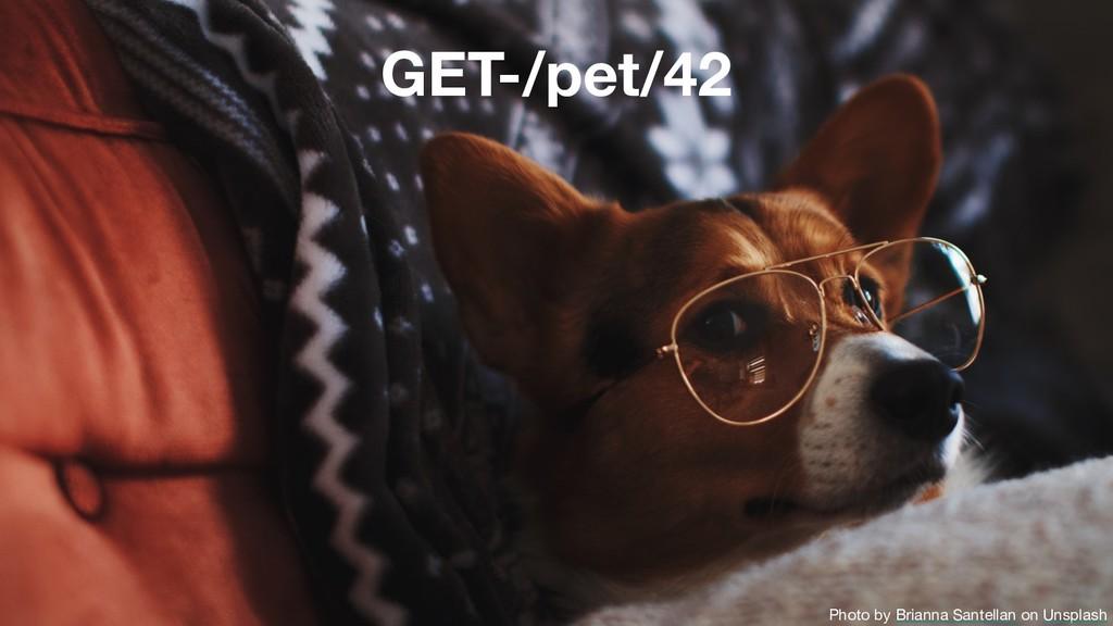 GET-/pet/42 Photo by Brianna Santellan on Unspl...