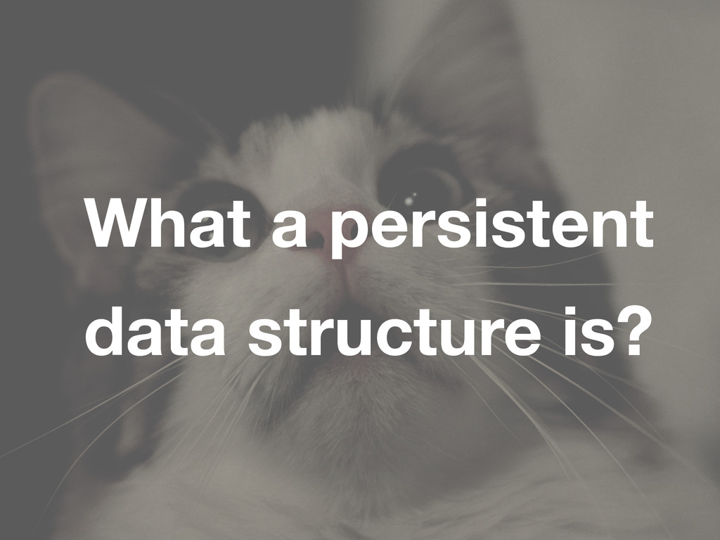 What a persistent data structure is?