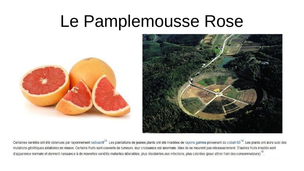 Le Pamplemousse Rose