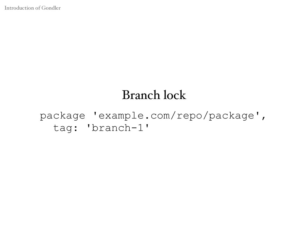 Branch lock package 'example.com/repo/package',...