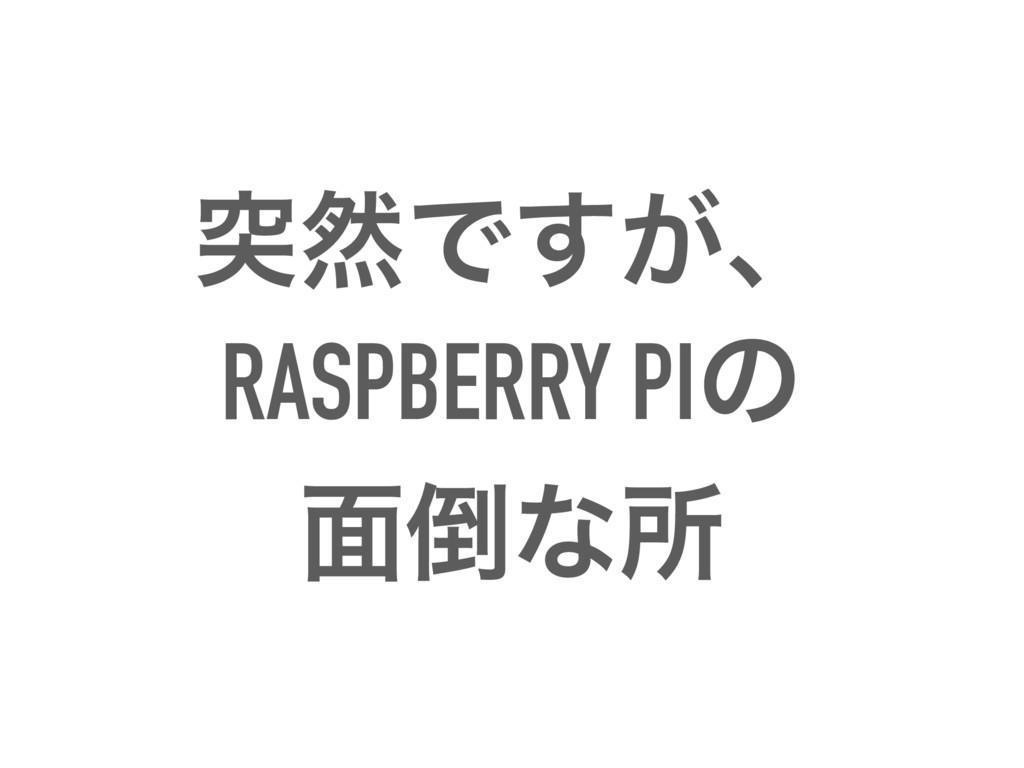 ಥવͰ͕͢ɺ RASPBERRY PIͷ ໘ͳॴ