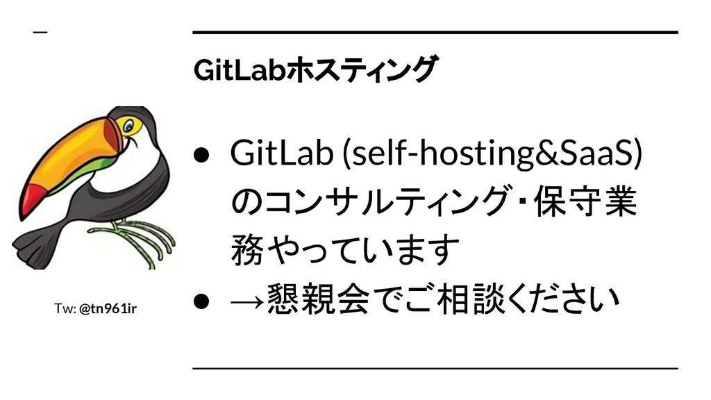 GitLabホスティング ● GitLab (self-hosting&SaaS) のコンサル...