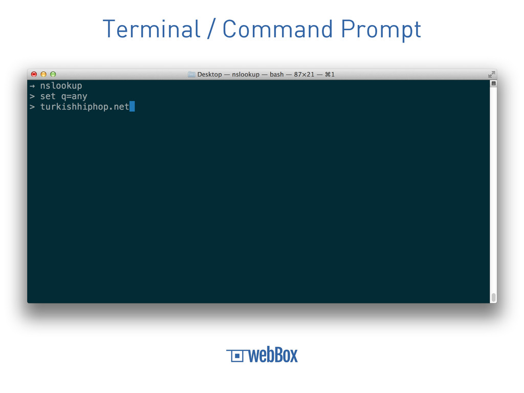Terminal / Command Prompt