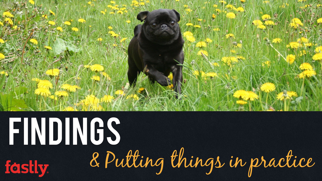 & Putting things in practice Findings