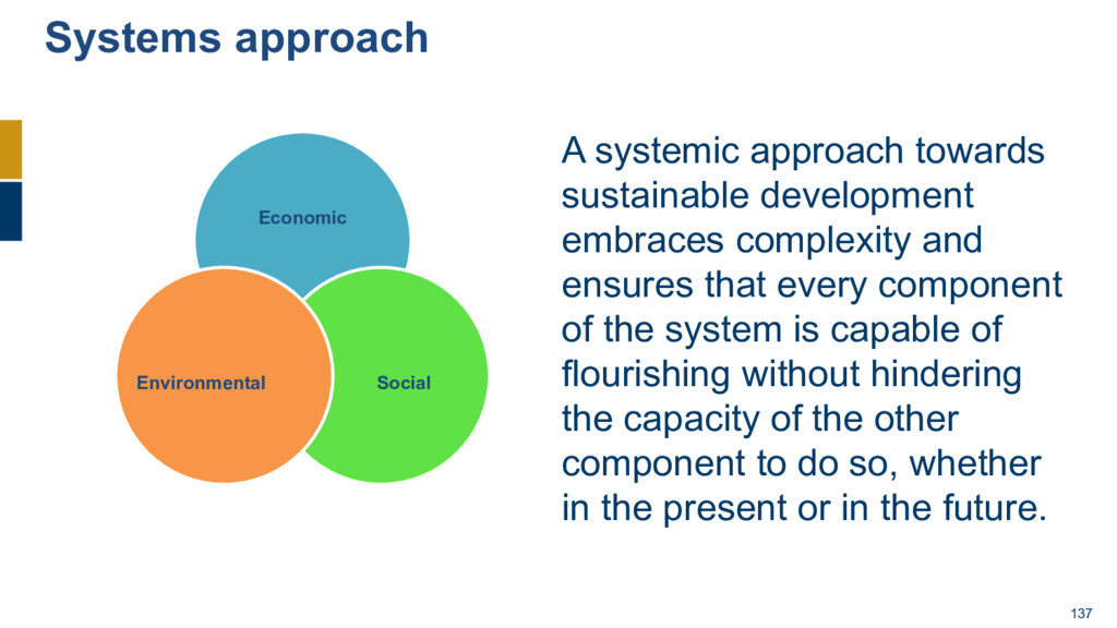 137 A systemic approach towards sustainable dev...