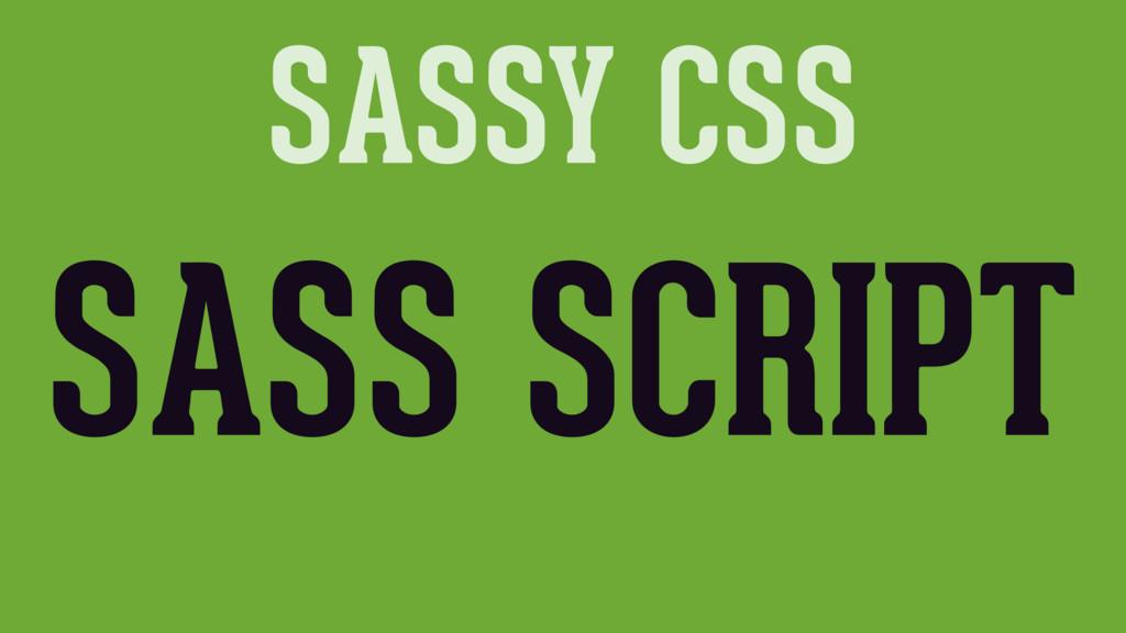 SASSY CSS SASS SCRIPT