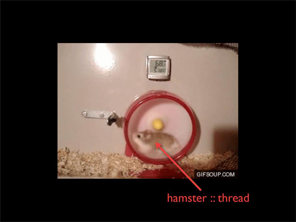 hamster :: thread