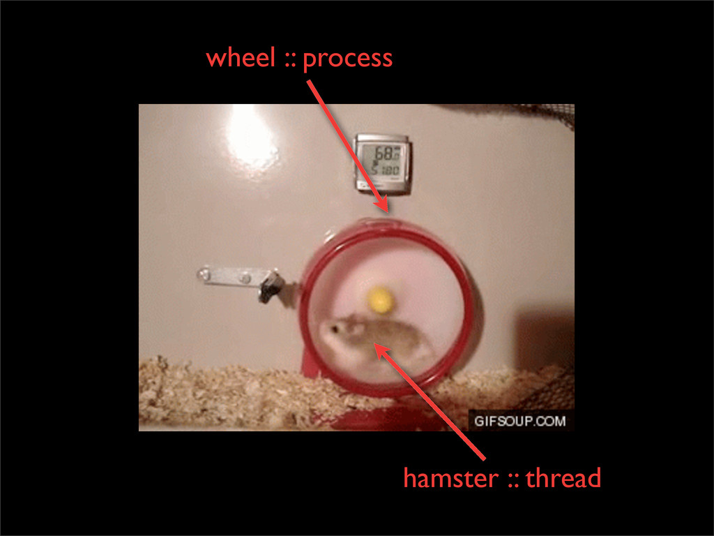 wheel :: process hamster :: thread
