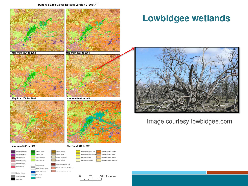 Lowbidgee wetlands Image courtesy lowbidgee.com