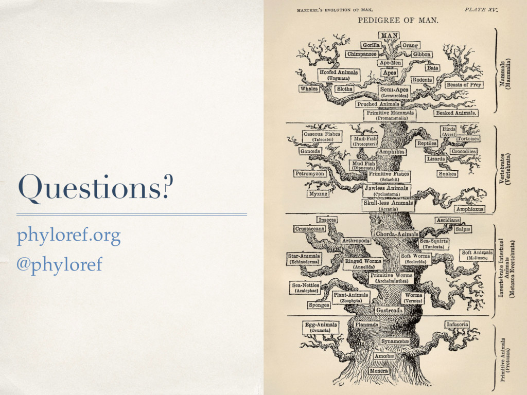Questions? phyloref.org @phyloref