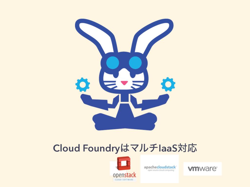 Cloud FoundryϚϧνIaaSରԠ