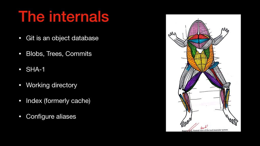 The internals • Git is an object database  • Bl...