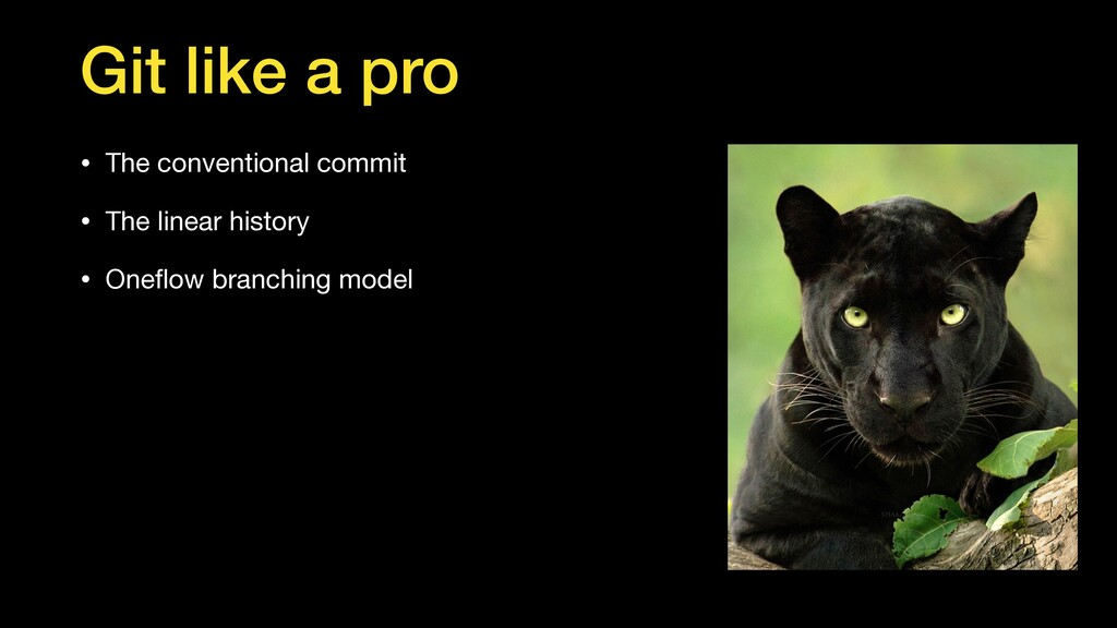 Git like a pro • The conventional commit   • Th...