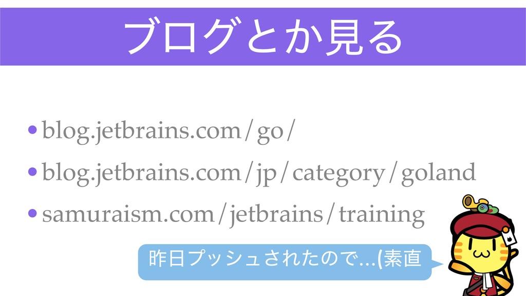 ϒϩάͱ͔ݟΔ •blog.jetbrains.com/go/ •blog.jetbrains...