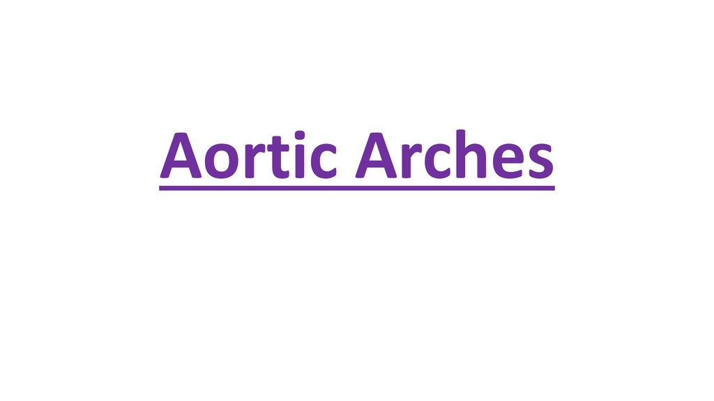 Aortic Arches